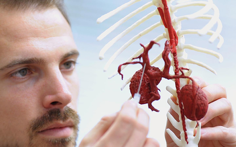 3D printing – VetCT, Consultants in Telemedicine